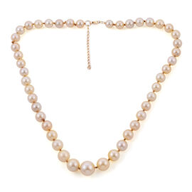 9K Yellow Gold Golden South Sea Pearl Necklace (Size 18 with 2 inch Extender)
