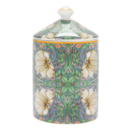 Lesser & Pavey William Morris Pimpernel Green Candle Jar (13X8 CM )