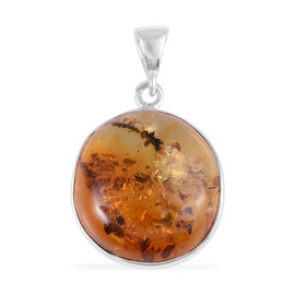 Baltic Amber (Rnd) Pendant in Rhodium Overlay Sterling Silver