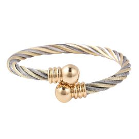 Twisted Magnet Bangle (Size 6) in Dual Tone