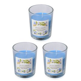 Set of 3 - Fragranced Candles with Blue Wax (Ficus Carica Fragrance)  Burn Time - 12hrs