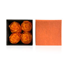 Set of 4 Candles in Box Red Colour Rose Aroma Size 10x10x5 Cm in Orange Colour