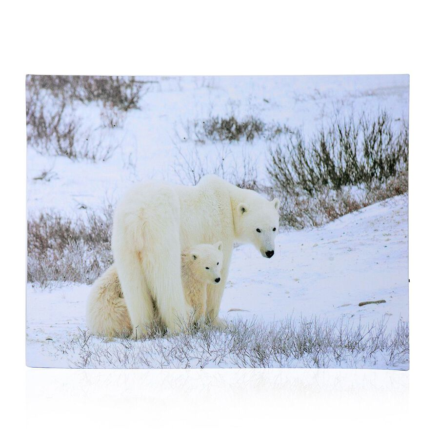 Snow and polar bear pattern wall art with led light size 40x30 cm 2796304 tjc - Add spark wall art picture lights ...