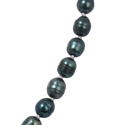 One Time Deal- 2 Piece Set Fresh Water Pearl Earrings and Necklace (Size 20 with 2 inch Extender) in Stainless Steel - Peacock