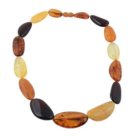 Multi Colour Baltic Amber Necklace (Size 19)