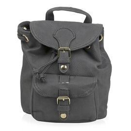 Designer Inspired- Grey Colour Backpack (Size 20x17x10 Cm)