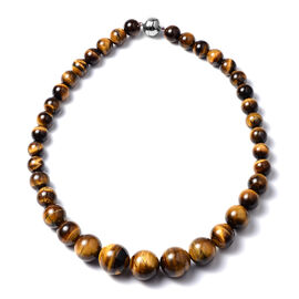 Yellow Tigers Eye Necklace(Size 20) in Rhodium Overlay Sterling Silver 778.50 CT.