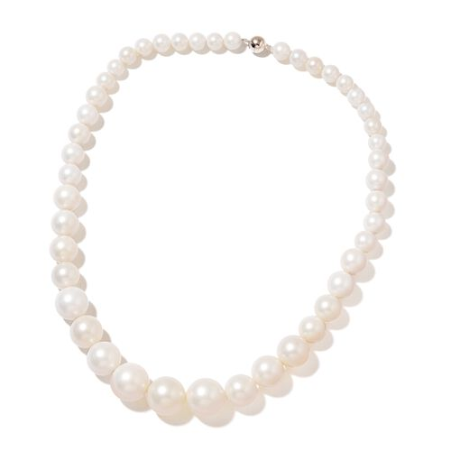 White Shell Pearl (Rnd) Graduated Necklace (Size 20) with Magnetic Clasp, Stretchable Bracelet (Size 7) and Ball Stud Earrings (with Push Back) in Rhodium Plated Sterling Silver