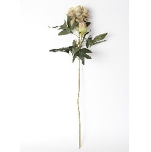 Decorative Bunch of Green Peony Flower Opp Bag (Size 1M Approx.)