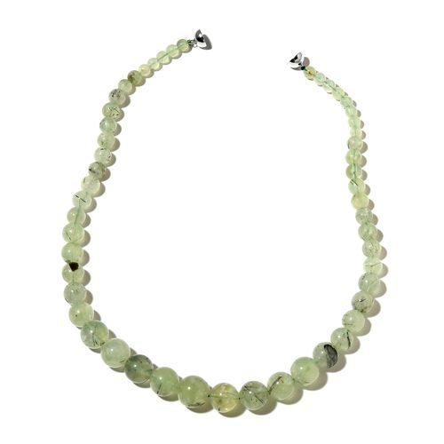 One Time Deal-Very Rare Antarctic Prehnite Necklace (Size 20) with Magnetic Clasp in Rhodium Plated Sterling Silver 460.500 Ct.