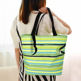 Reusable and Foldable Two Way Shopping Bag with Wheels (Size 50x20x40 Cm) - Green and Multi