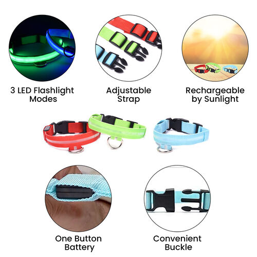 Set of 3 Adjustabe LED Pet Collars (Size M, 46-41cm) - Red, Blue and Green