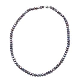 Freshwater Peacock Pearl Necklace (Size 20) in Rhodium Overlay Sterling Silver