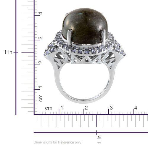 Labradorite (Ovl 21.00 Ct), Tanzanite Ring in Platinum Overlay Sterling Silver 22.850 Ct.