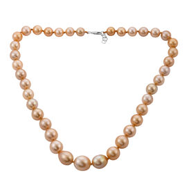 Collectors Edition- 950 Platinum AAAA Golden South Sea Pearl Necklace (Size 20)