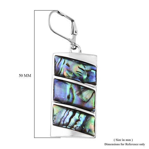 Abalone Shell Earrings in Stainless Steel