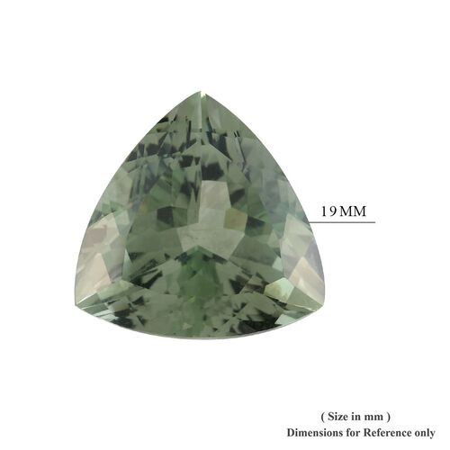 AAA Prasiolite Trillion 19 Faceted 22.13 Cts