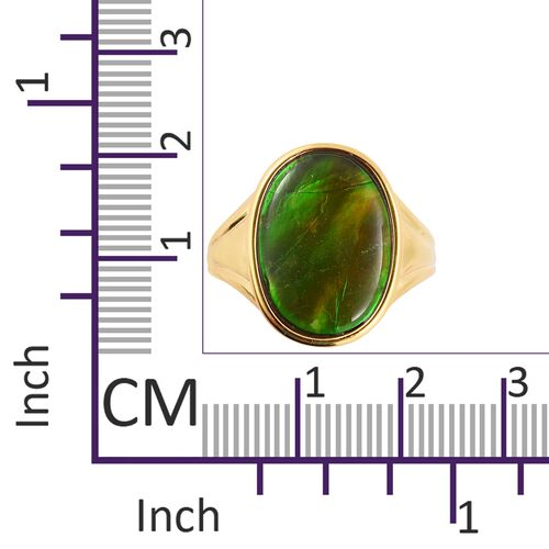 AA Canadian Ammolite (Ovl 18x13 mm) Ring in Vermeil Yellow Gold Overlay Sterling Silver.