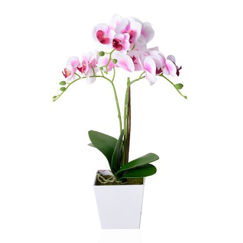 Home Decor Artificial Pink and White Butterfly Orchid Plant with Pot  (Size:50.5x12.5x12.5 Cm))